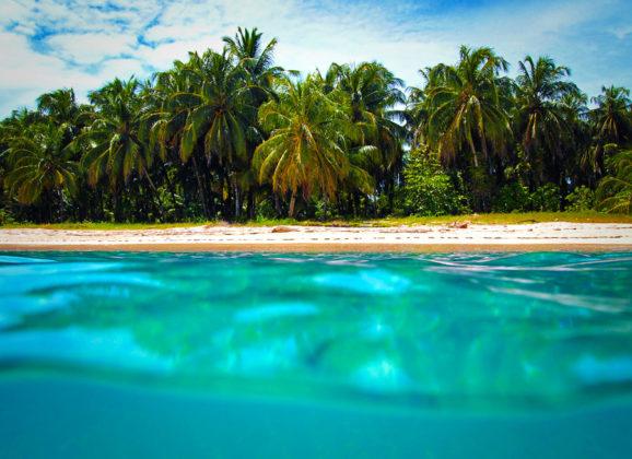 LIVE IN PARADISE:  3 Properties for sale in Bocas del Toro