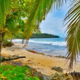Going With The Flow – Island style